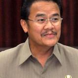 Implementasi Strategi Daerah (STRADA) REDD+ Sebagai Upaya Mewujudkan Ekonomi Hijau Di Provinsi Kalimantan Tengah