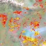 Data baru kebakaran Riau memberikan wawasan baru