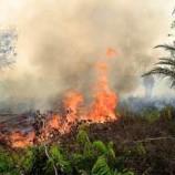 T&J soal kebakaran dan asap di Asia Tenggara