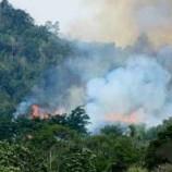Titik Kebakaran Lahan Kembali Bermunculan Di Riau