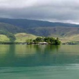 Hutan Papua Dinilai Penting Bagi Dunia