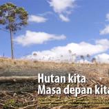 Menyikapi Pengelolaan Hutan Indonesia