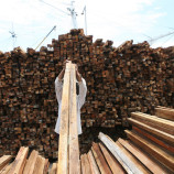 Forest Misuse Costs Indonesia $7 Billion in Revenue, Report Says