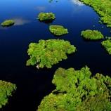 Kasus Cagar Biosfer Ditangani Kemhut-KLH