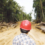 With Loss of Indonesia's Forests, a Litany of Problems