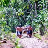 Konstitusionalitas dan urgensitas penetapan kriteria & indikator dalam pengakuan dan perlindungan masyarakat adat