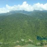 Pengukuhan Kawasan Hutan: Barito Selatan Jadi Daerah Pelopor