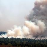 Siaran Pers: Jokowi Prioritaskan Blusukan ke Lokasi Kebakaran Gambut dan Hutan