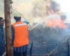 8 Ribu Ha Hutan-Lahan Terbakar
