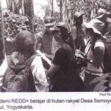 Blusukan ke Hutan Rakyat Dan Pengrajin Mebel