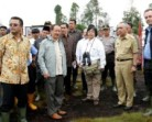 Minister Siti drops in on Riau to check haze problem