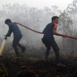 Operasi Pemadaman Kebakaran Hutan Berlanjut
