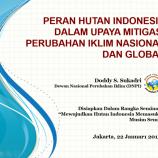 Peran Hutan Indonesia Dalam Upaya Mitigasi Perubahan Iklim Nasional dan Global