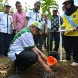 Penanaman 1 Miliar Pohon Belum Bisa Gantikan Hancurnya 57 Juta Hektare Hutan