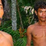 Peluang Perhutanan Sosial dan Hutan Adat dalam Mendukung Moratorium