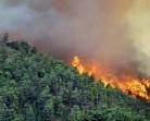 Kebakaran Hutan Belum Terdata