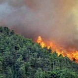 Land, Forest Fires Continue to Spread in Sumatra, Kalimantan