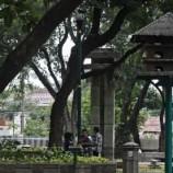 Sulawesi Krisis Lahan