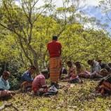 Menjaga warisan alam dengan cara adat