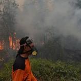 Pemerintah Akui Terlalu Banyak Terbitkan Izin Hutan