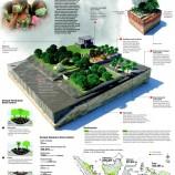 Ekosistem Rawa Gambut, Benteng Alam Nan Rentan