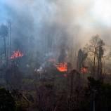 Titik Api Muncul di Riau