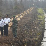 Riau Siapkan 1.400 Sekat Kanal