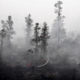 Siaran Pers : Bencana Ekologis Asap Seharusnya Tidak Terjadi Lagi