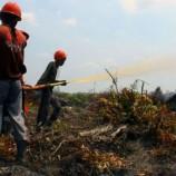 Kasus Lahan Sawit: SPS Tak Buka Lahan dengan Membakar