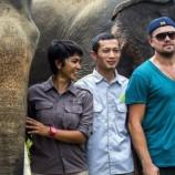 Perjuangan Leo untuk Menyelamatkan Kawasan Ekosistem Leuser