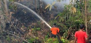 Cegah Kebakaran Hutan dengan Sumur Bor
