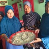 Foto: Journalist Visit to Kabupaten Luwu Utara, Sulawesi Selatan (31 Mei – 4 Juni 2016)