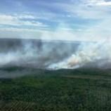Penghentian Kasus Kebakaran Lahan Riau Tuai Kecaman