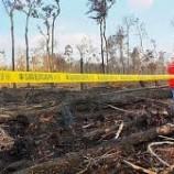 Riau dan Kalbar Jadi Fokus Penanganan Karhutla