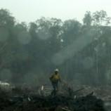 Asap Kembali Selimuti Pontianak, Jambi Belum Mampu Atasi Kebakaran Hutan