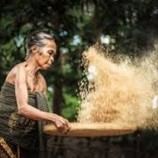 Indonesia Belum Melindungi Hak atas Hutan bagi Perempuan