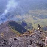 Taman Nasional Gunung Rinjani Terbakar Lagi