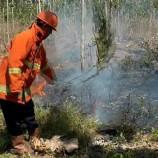 Langkah Persuasif Diutamakan, Tindakan Hukum Dinilai Hanya Efektif Perkecil Titik Api