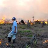 HAMBATAN REGULASI GAMBUT : Beleid Beresiko Ancam Industri di Sumatra