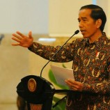 Jokowi Gives Harsh Appraisal on Forestry Reform