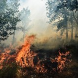 Authorities remain vigilant on hot spots