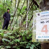 616 Ribu Ha Hutan  Telah Dikelola Masyarakat