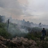 Jambi land, forest fires continue