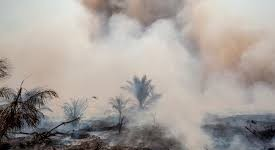 Riau braces for more wildfires amid hot weather