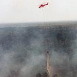 Ribuan Hektar Gambut Terbakar