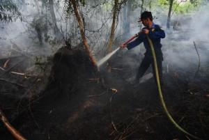 petugas-pemadam-kebakaran-kota-pontianak-memadamkan-api-yang-merambat-_160822195915-676