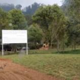 Bogor Kembalikan Area Hutan