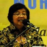 Indonesia Terus Tekan Angka Deforestasi