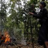 Percepatan Penetapan Hutan Adat Terkendala