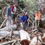 Indonesia Terancam Bencana Lingkungan
